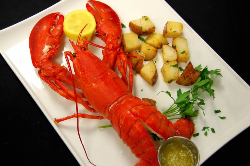 Steamed 2 lb Maine Lobster